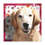 Golden Retriever 16x16 Stretched Canvas Gallery Wrapped Canvas