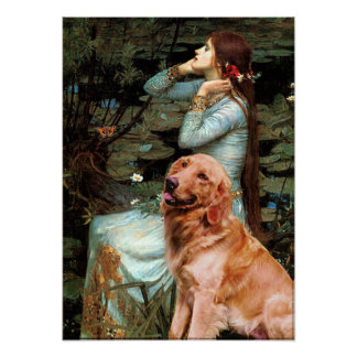 Golden Retriever 1 - Ophelia Seated Poster