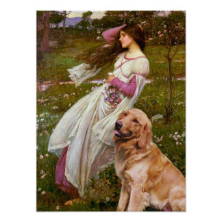 Golden Retriever 1 - Windflowers Poster