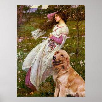 Golden Retriever 1 - Windflowers Poster