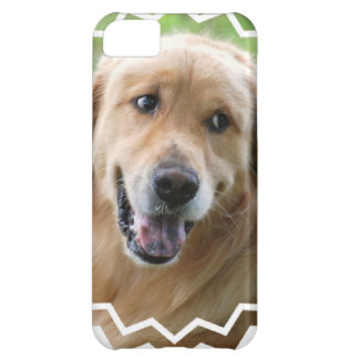 golden-retriever-31 iPhone 5C covers