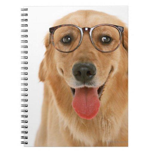Golden Retriever 3 Notebook
