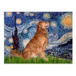 Golden Retriever 3 - Starry Night Postcard