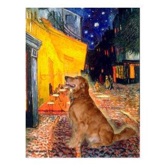 Golden Retriever 3 - Terrace Cafe Postcards