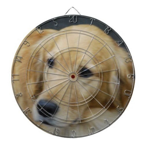 golden-retriever-45.jpg tablero de dardos