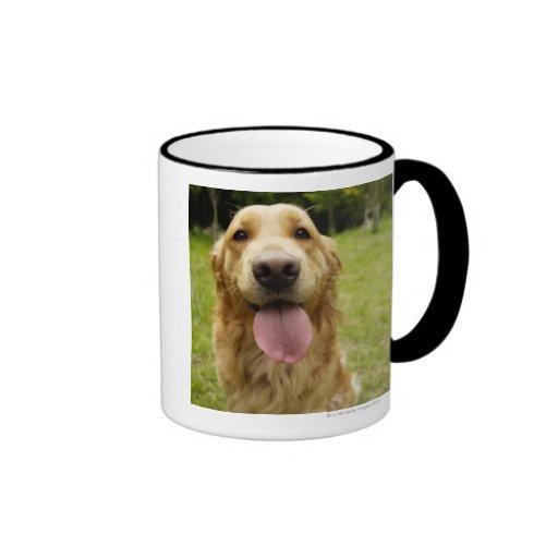 Golden Retriever 4 Coffee Mugs