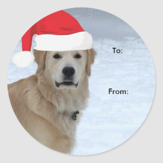 Golden retriever a/desde los pegatinas del navidad etiqueta redonda