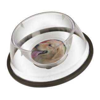 Golden retriever adorable cuenco para mascotas
