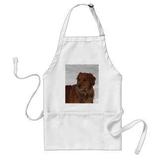 Golden Retriever Adult Apron