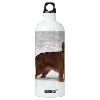 Golden Retriever Aluminum Water Bottle