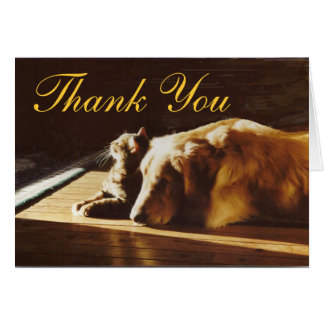 Golden Retriever and Cat Thank You Card