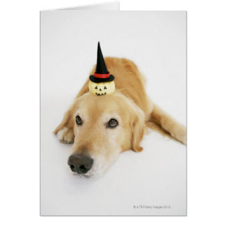 Golden retriever and ornament greeting card