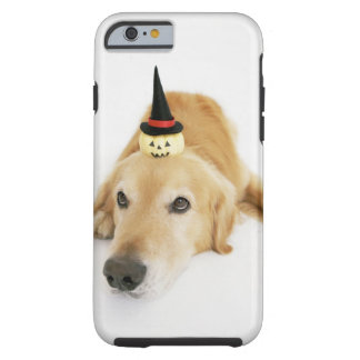 Golden retriever and ornament tough iPhone 6 case