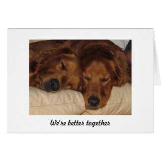 Golden Retriever Anniversary Card, Better Together Greeting Card