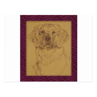 Golden Retriever art drawn from only the words Postcard