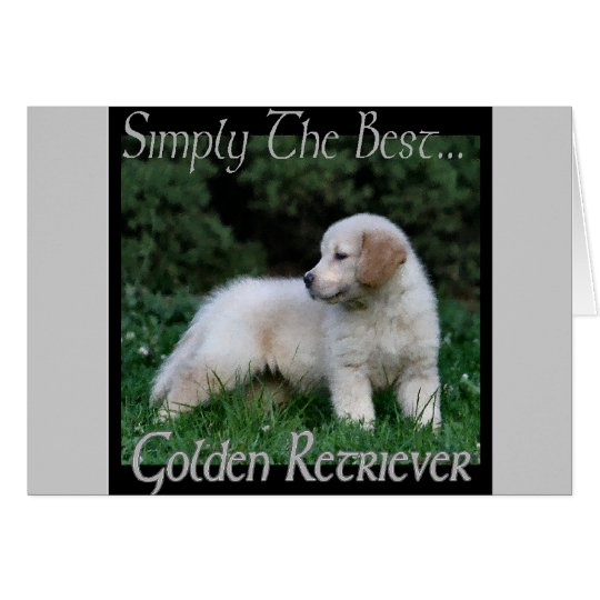 Golden Retriever Art Gifts Card