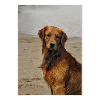 Golden Retriever Art Gifts Poster