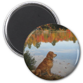 Golden Retriever Autumn at the Lake 2 Inch Round Magnet
