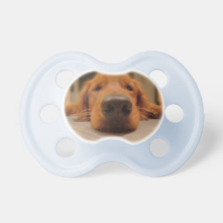 Golden Retriever Baby Pacifier, Nose Pacifier