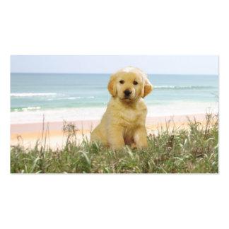 Golden Retriever Beach Grass Breeder Business Card