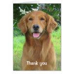 Golden Retriever Beauty Thank you Greeting Card