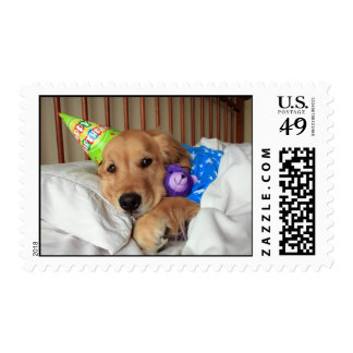 Golden Retriever Birthday Postage Stamp