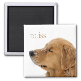 Golden Retriever Bliss Text Magnet