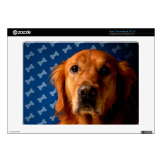 Golden Retriever blue bone background Decal For Acer Chromebook