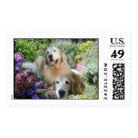 Golden Retriever Buddies Postage Stamp