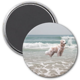 Golden Retriever By The Sea Magnet