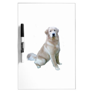 Golden Retriever (C) - Very Light Dry-Erase Boards