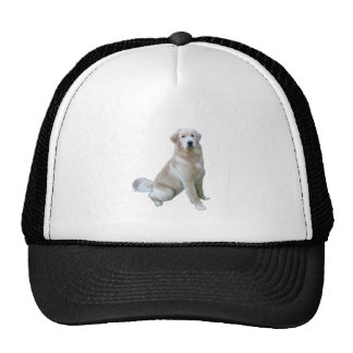 Golden Retriever (C) - Very Light Trucker Hat