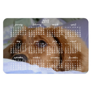 Golden Retriever Calendar 2017 Large Photo Magnet