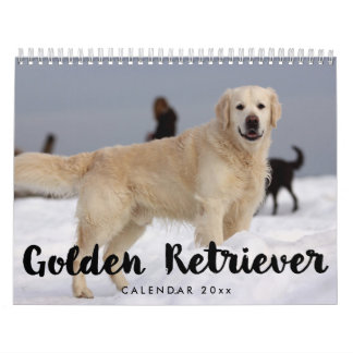 Golden Retriever Calendar 2018 Add Your Photos