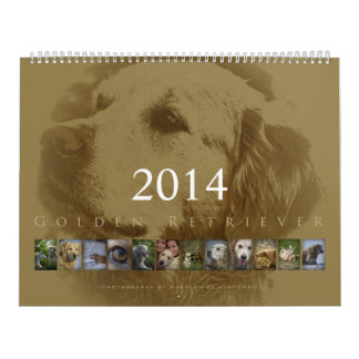 Golden retriever - calendario de pared 2014