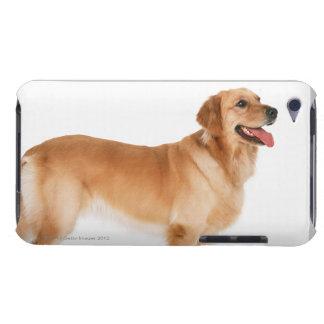 Golden Retriever Case-Mate iPod Touch Case