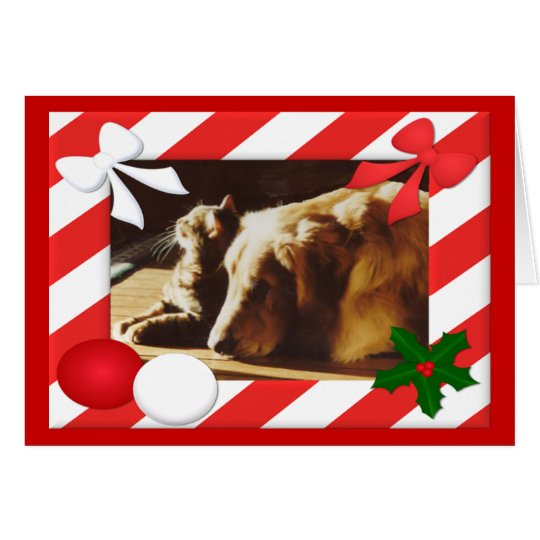 Golden Retriever-Cat Christmas Card Frame