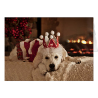 Golden Retriever Christmas and New Year Card