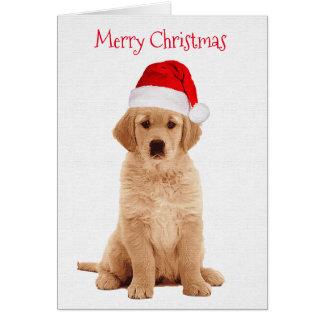Golden Retriever Christmas Card