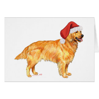 Golden Retriever Christmas Cards