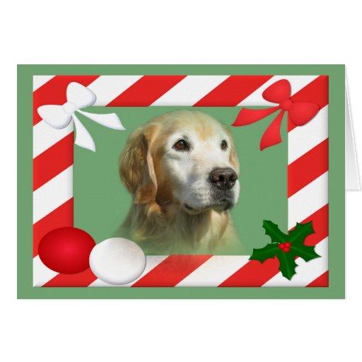 Golden Retriever Christmas Card Frame