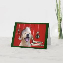 Golden Retriever Christmas Cards Gifts card