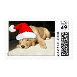 Golden Retriever Christmas Puppy Stamps
