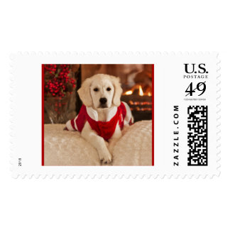 Golden Retriever Christmas Stamp