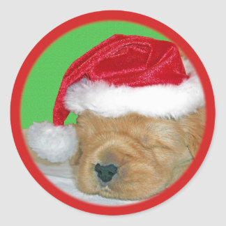 Golden Retriever Christmas T-Shirts, Gifts, Cards Classic Round Sticker