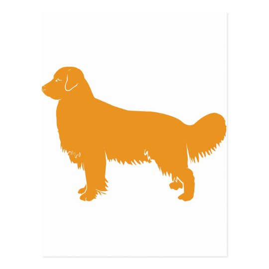 Golden Retriever Classic Profile Postcard
