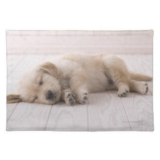 Golden Retriever Cloth Placemat