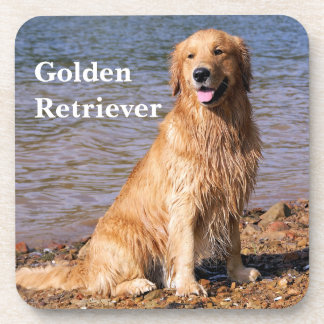 Golden Retriever Coaster