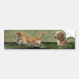 Golden Retriever collage bumper sticker