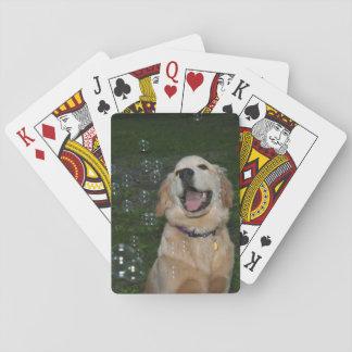 Golden retriever con las burbujas cartas de póquer